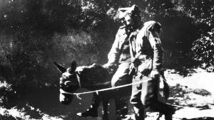 041971-john-simpson-donkey-gallipoli